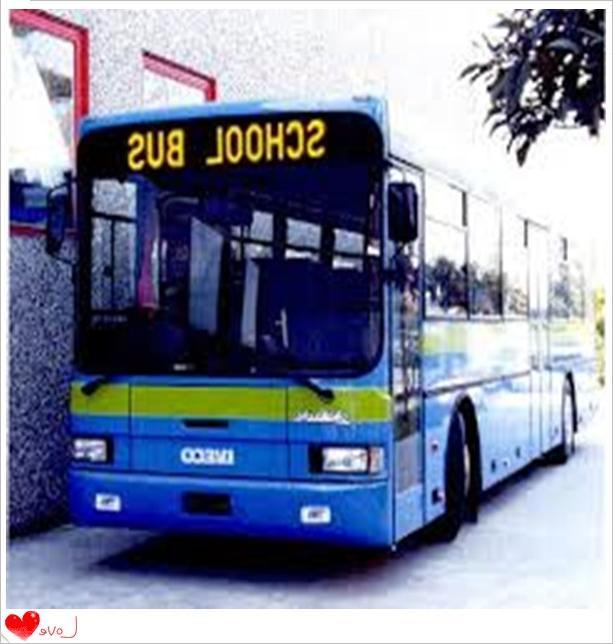 под запрещающем знаком автобус